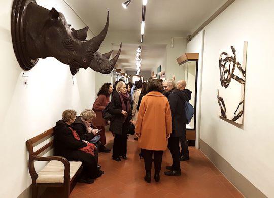 """Credits: Saulo Bambi – Sistema Museale dell'Universita? degli Studi di Firenze, Sez. Zoologia """"La Specola"""""""