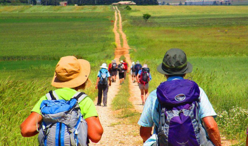 Sui passi del pellegrino…a distanza!