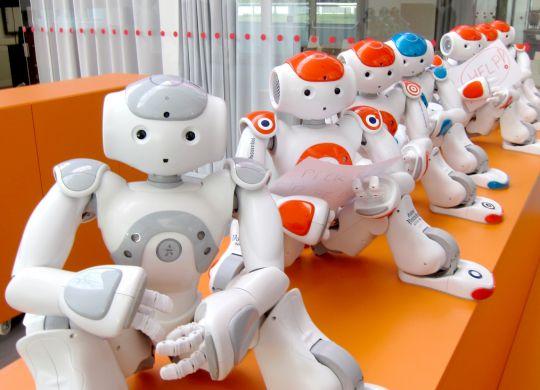 I robot NAO per la NAO Challenge